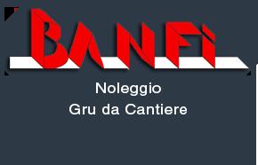 noleggio-gru-da-cantiere-edilizia-banfi-srl-lomazzo-como
